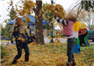 Children at a Playground Playing with Fallen Leaves
