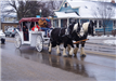 Horse Drawn Carriage Pulls Two Riders down a City Street on a Snowy Winter Day